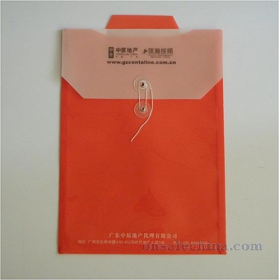 Translucent File Envelope