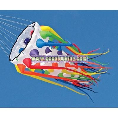 Inflatable Kite