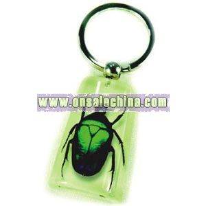 Insect Keychain - Acrylic Amber Keychain