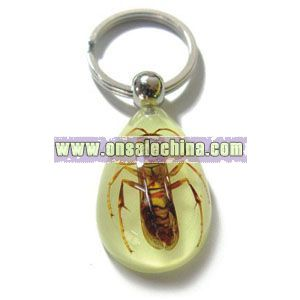 Real Insect Key Chain