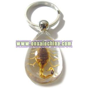 Insect Amber Keychain