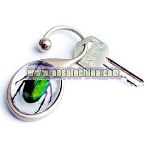 Real Insect in Acrylic Resin Key Chains