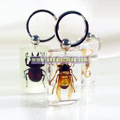 Amber Key Chains