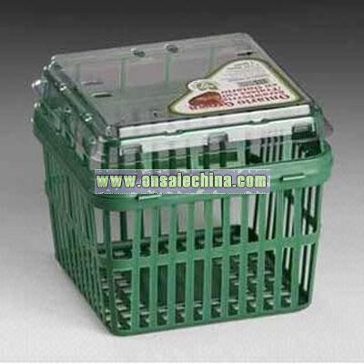 FRESH FRUIT CLAMSHELL PP Food Packaging Container