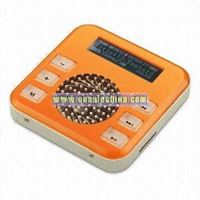 Flash MP3 Player Radio