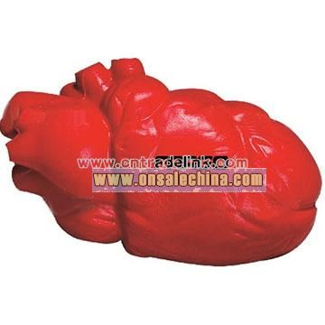 Anatomical Heart Stress Ball - Budget