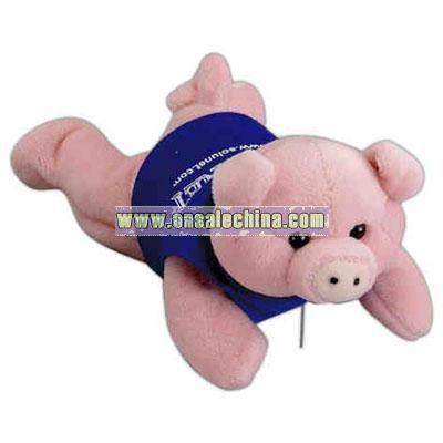 Pig Lying 8